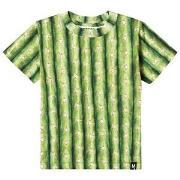 Molo Raymont T-Shirt Cactus 98 cm (2-3 år)