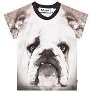 Molo Egon T-Shirt Sort/Hvid Bulldog 80 cm (9-12 mdr)